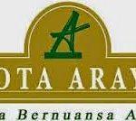 Kota Araya